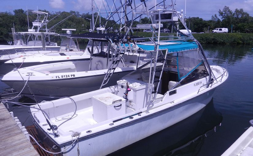 Key West Fishing Report – Barracuda Thieves, Nurse Shark Frenzy with Meridian Charters