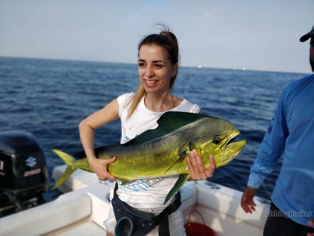 Mahi Mahi caught in Fujairah